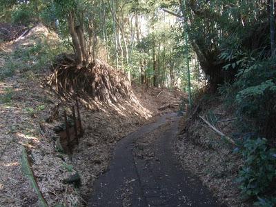 境川CR周辺の激坂群を自転車で登ってみた(境川河岸段丘)