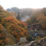 紅葉真っ盛りの姥湯林道線ヒルクライム